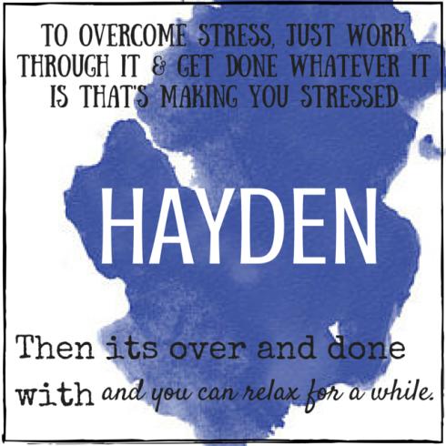stressless_Hayden