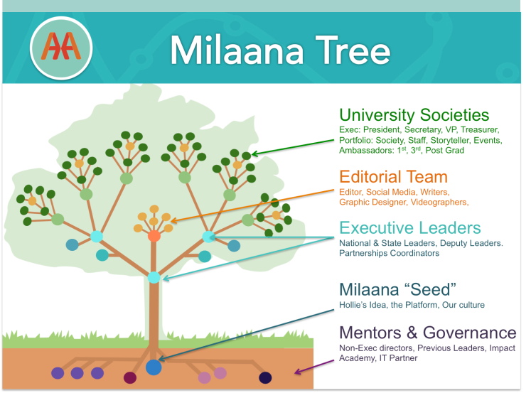 Milaana's Organisation Chart & Family Tree!